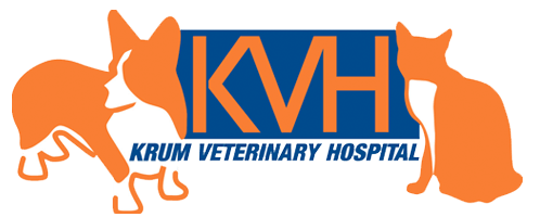 Krum Veterinary Hospital